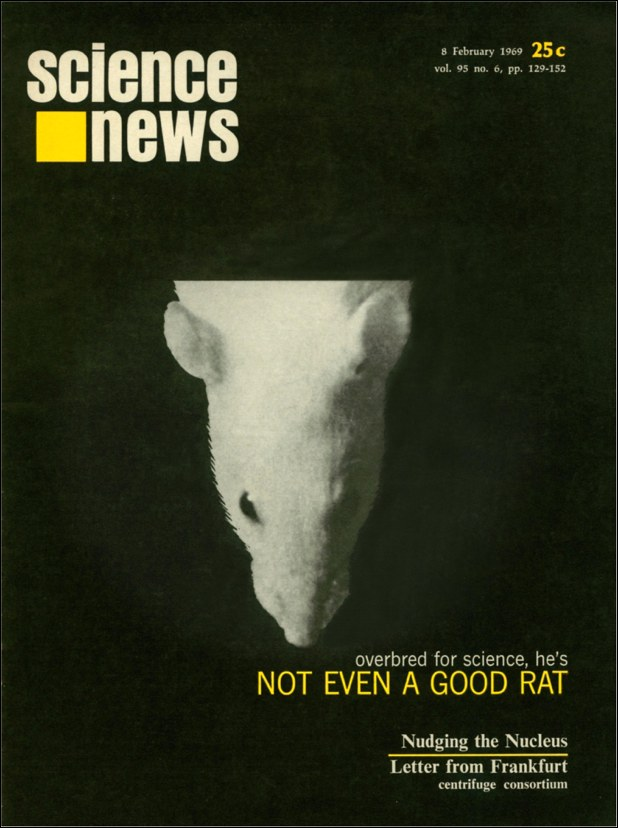 Science News cover from February 8, 1969