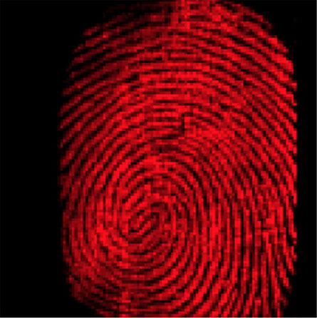 Traces of cocaine delineate a fingerprint left on glass. By bouncing water droplets off a surface, chemists can image fingerprints and sniff out thousands of different chemicals simultaneously.