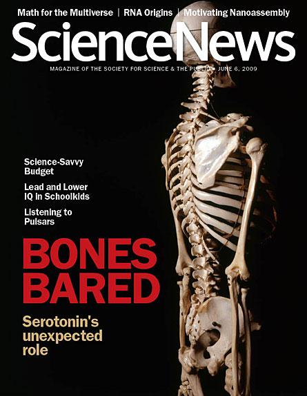 Bones Bared: Serotonin's Unexpected Role