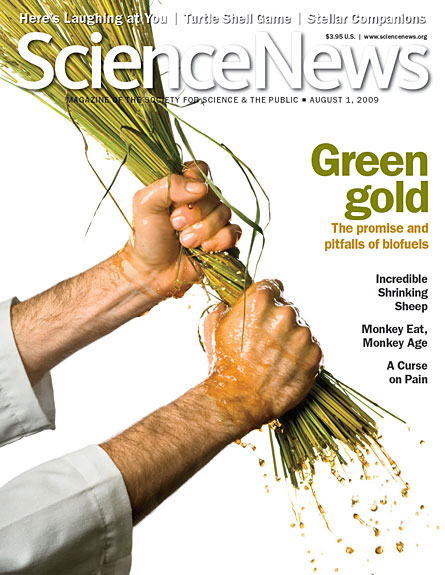Green Gold: The promise and pitfalls of biofuels