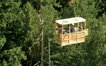 Recent monitoring (from a gondola in Washington state, shown) reveals that rates of tree death are up. Credit: Univ. of Washington