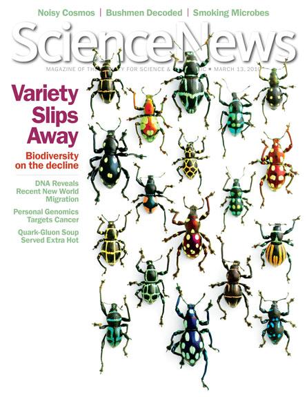 Variety slips away: Biodiversity on the decline