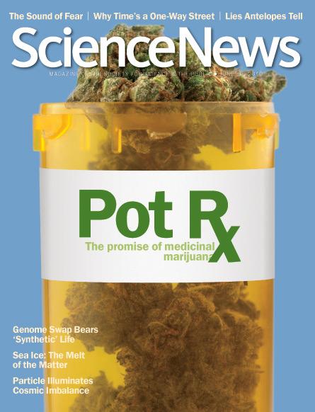 Pot Rx: The promise of medicinal marijuana