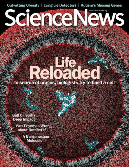 Life Reloaded: In search of origins, biologists try to build a cell