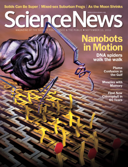 Nanobots in Motion: DNA Spiders Walk the Walk