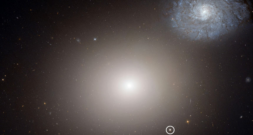 The galaxies M60-UCD1 and M60