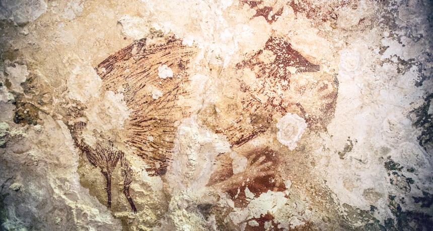 ancient rock art drawing of a babirusa, or deer-pig