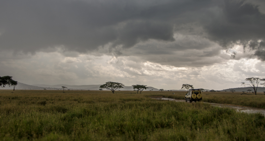 the Serengeti in Tanzania