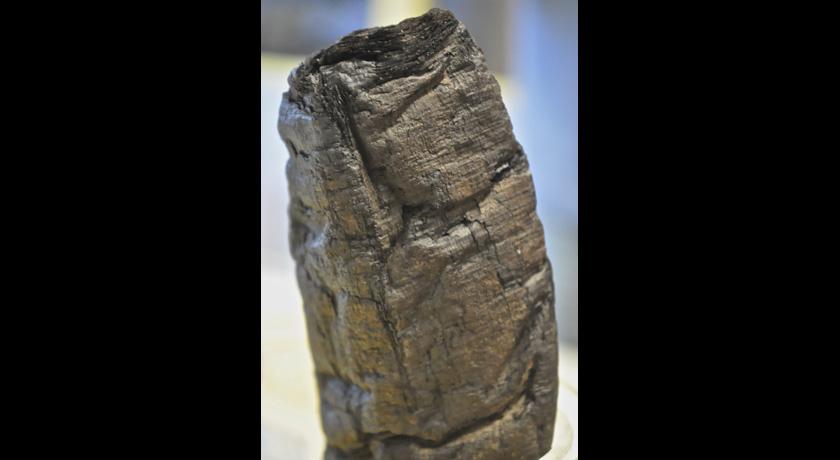 Herculaneum scroll