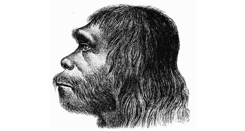 Neandertal sketch