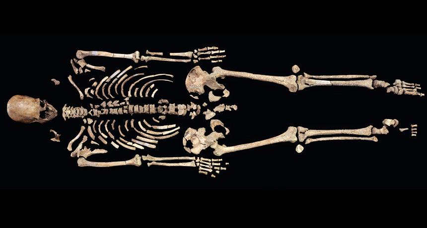 Kennewick Man Skeleton