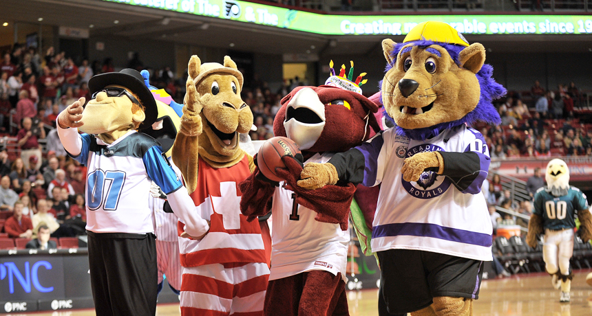 Temple University mascot and other Philadelphia mascots