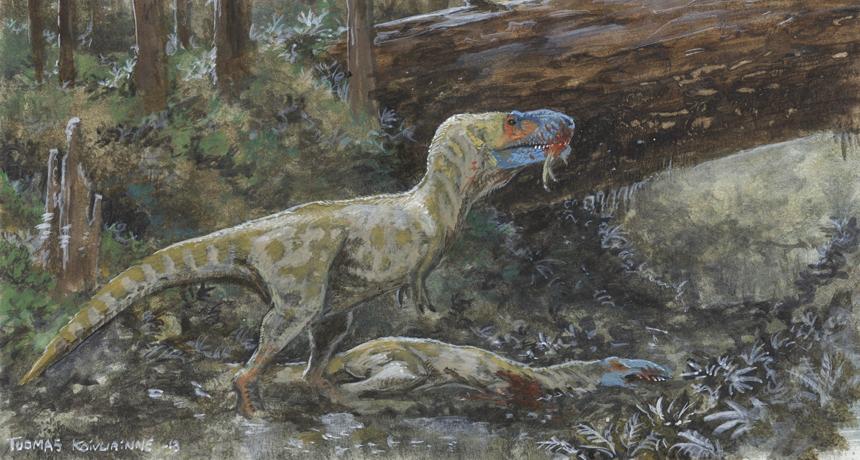 Illustration of a scavenging tyrannosaur