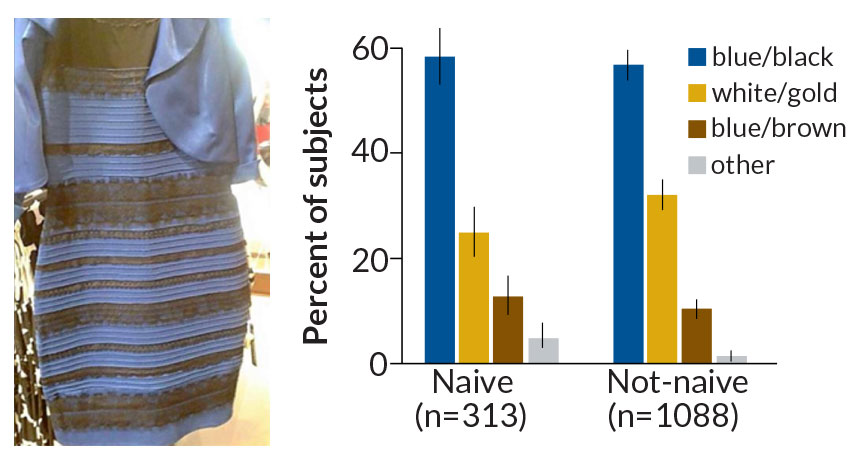 The dress, and how people interpreted the colors of it