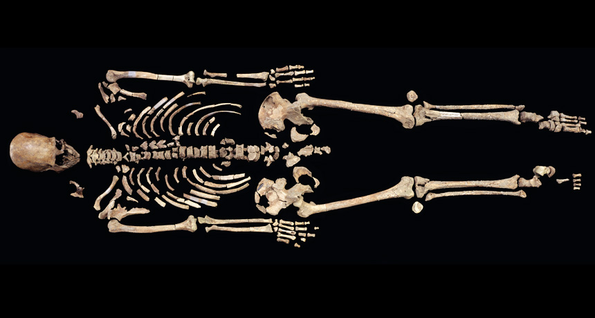 Kennewick Man's skeleton