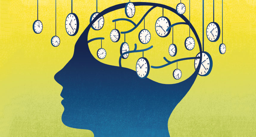 illustration of clocks and the brain