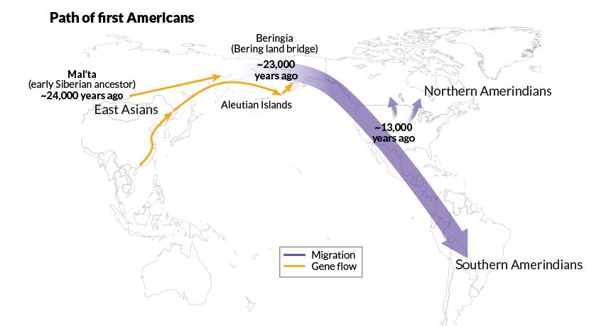 Native Americans' origins