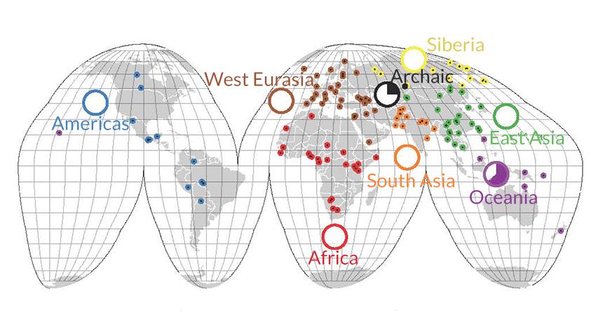 Map of human genetic diversity