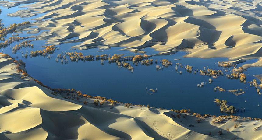 China's Taklamakan Desert