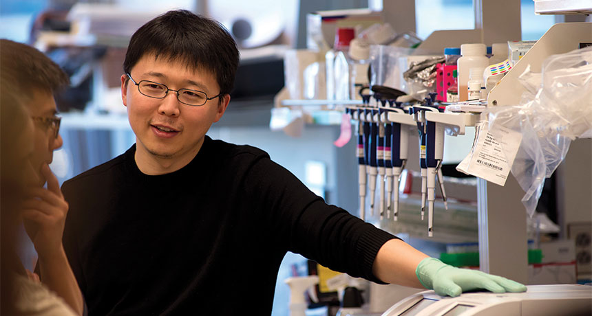 Feng Zhang in his laboratory
