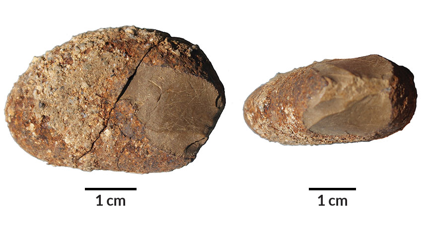 stone tool from Monte Verde