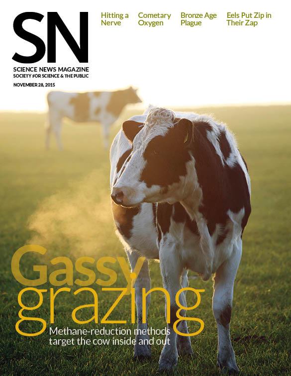 cover of Nov. 28, 2015 Science News