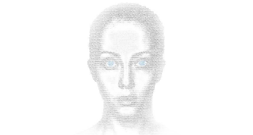 facial sketch
