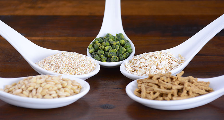 examples of high-fiber foods
