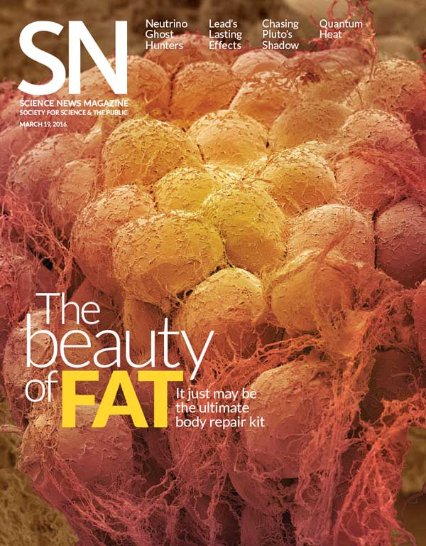 cover of 3/19/16 issue of Science News