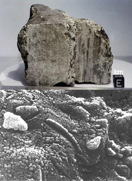 martian meteorites