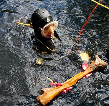 bone diver