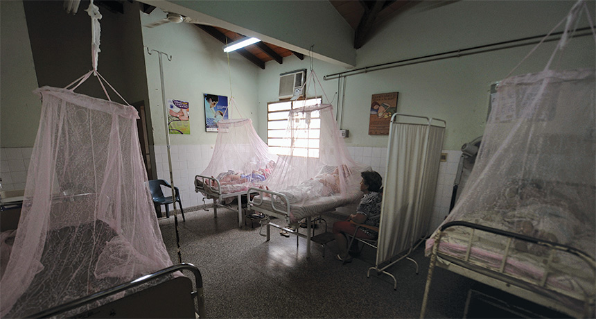 patients behind mosquito bed nets
