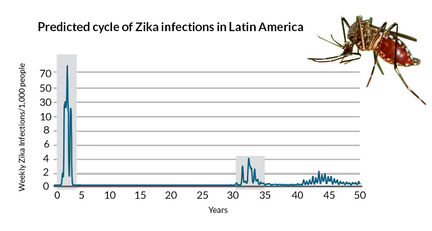 Zika virus in Latin America