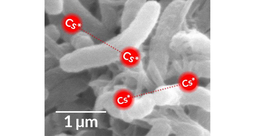 cesium atoms