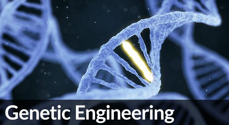 Genetic Engineering - illustration of DNA