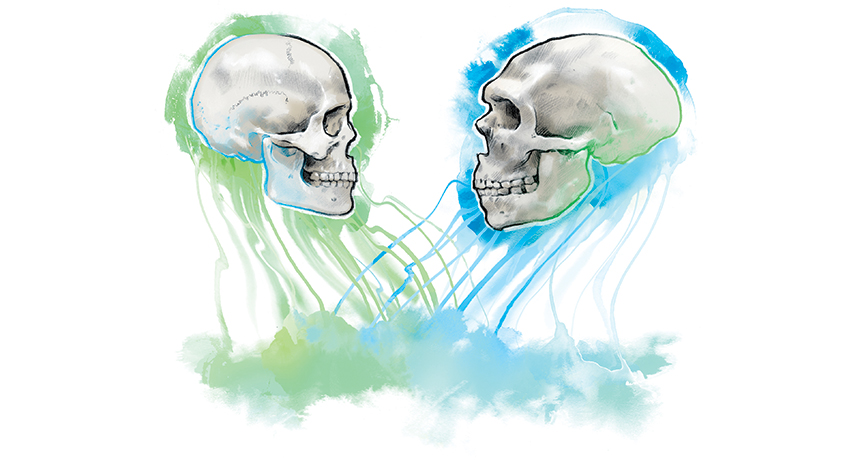 illustration of two skulls