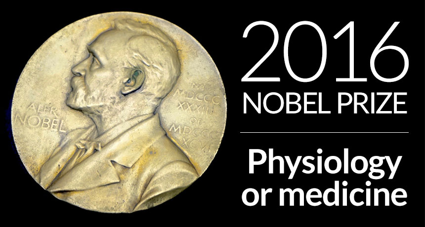 2016 nobel prize in physiology or medicine