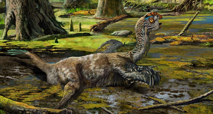illustration of a mud dragon