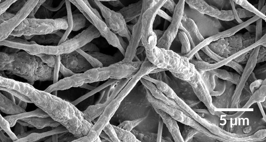 flame resistant fibers