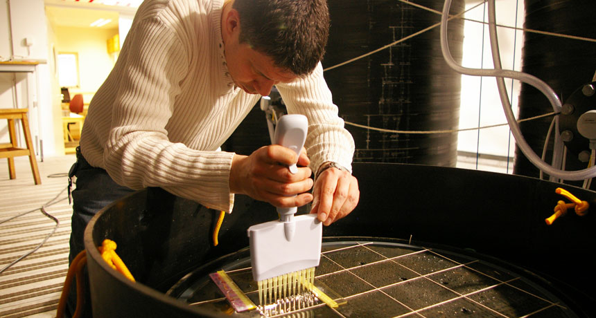 researcher working with mercury