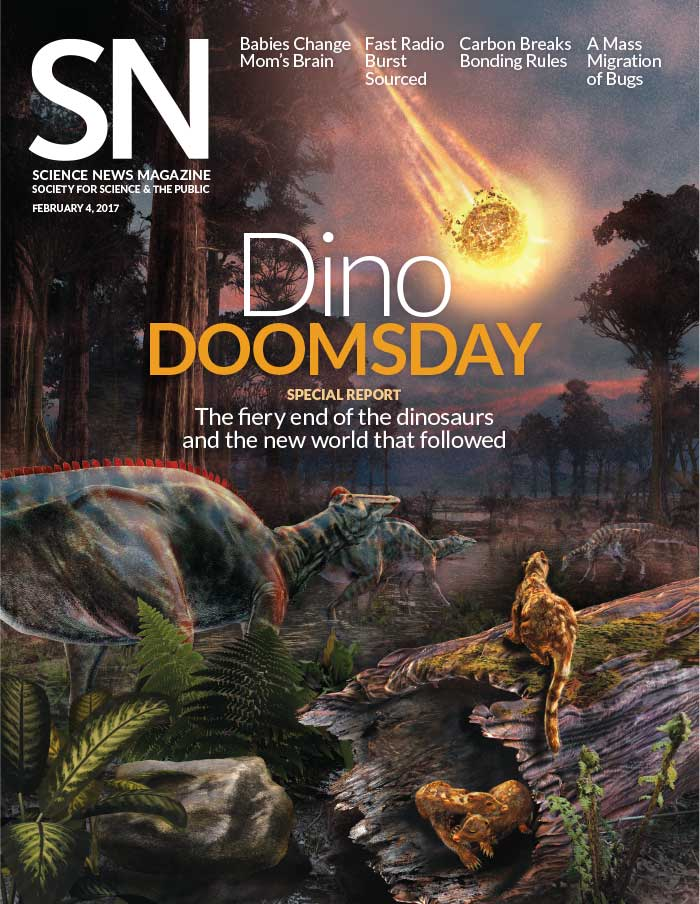 Cover of February 4, 2017 issue