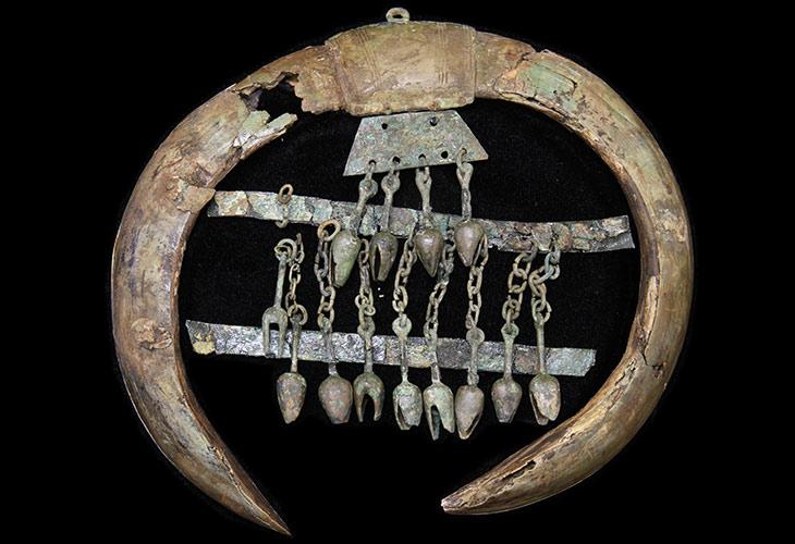 Iron Age boar tusks