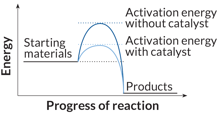 Catalyst activation energy graph