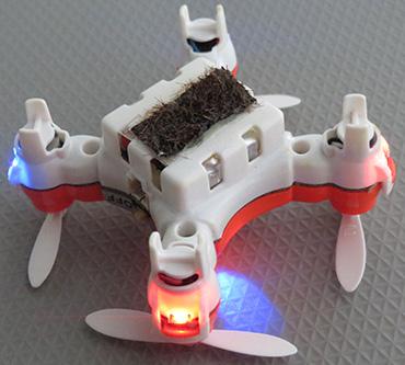 pollinator drone