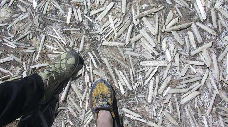 gypsum crystals