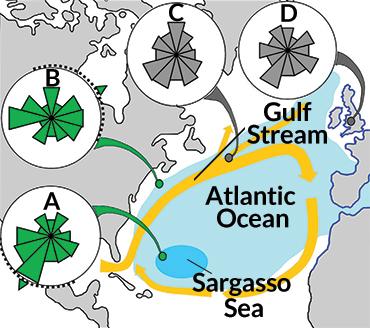 map of Atlantic ocean eel migration