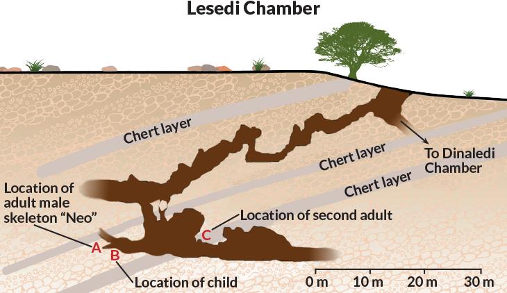 Homo naledi chamber map