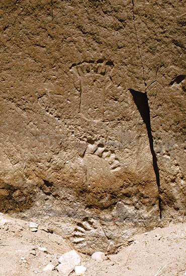 six toe carving