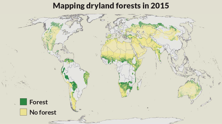 map of forested and arid areas on Earth