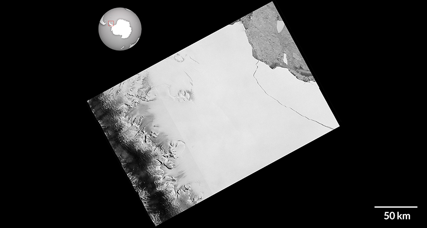 Sentinel-1 satellite image of Larsen C